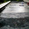 Узнать площадь повреждений и произвести аварийный ремонт